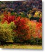 Acadia Colors Metal Print