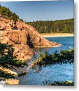 Acadia National Park Rocky Shoreline Metal Print