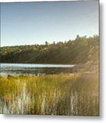 Acadia National Park Shoreline In Evening Sun Metal Print