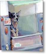 Acd Delivery Boy Metal Print