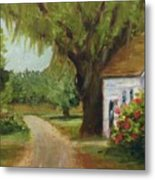 Ace Basin Cottage Metal Print