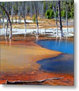 Acid Soup Yellowstone Metal Print