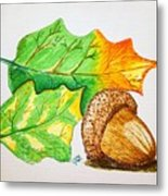 Acorn And Leaves Metal Print