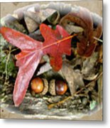 Acorns And Oak Leaves Metal Print