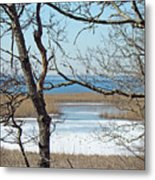 Across The Marsh To Woodneck Beach - Cape Cod Metal Print