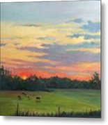 Across The Pasture Metal Print