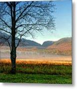 Adirondack Landscape 1 Metal Print
