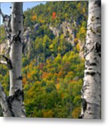 Adirondack Mountains New York Metal Print