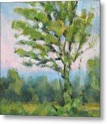Adirondack Tree Metal Print