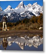 Admiring The Teton Sights Metal Print