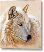 Adobe White Metal Print by Sandi Baker