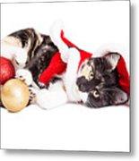 Adorable Christmas Calico Santa Kitty Metal Print