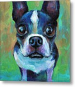 Adorable Boston Terrier Dog Metal Print