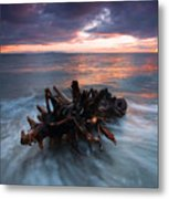 Adrift Metal Print by Mike  Dawson