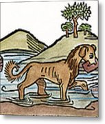 Aesop: Dog & Shadow, 1484 Metal Print