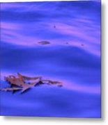 Afloat Metal Print by Sybil Staples