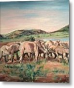 Africa Metal Print by Rosemary Kavanagh