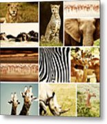 African Animals Safari Collage  Metal Print by Anna Om