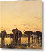 African Elephants Metal Print by Charles Emile de Tournemine