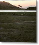 African Lake Metal Print