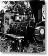 African Rail Metal Print