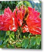 African Tulip Flower #2 Metal Print