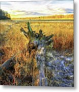 After Big Thaw Metal Print