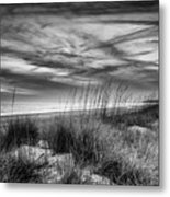 After Sunset In B And W Metal Print