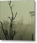 After The Burn Metal Print