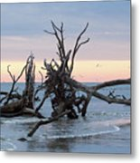 After The Storm At St. Helena Metal Print