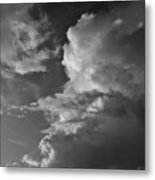 After The Storm In Black And White Metal Print