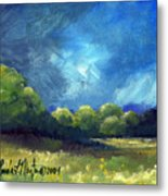 After The Storm Metal Print by Linda L Martin