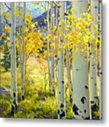 Afternoon Aspen Grove Metal Print