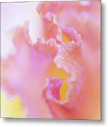 Afternoon Delight Macro 1. The Beauty Of Irises Metal Print