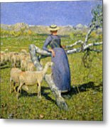 Afternoon In The Alps Metal Print