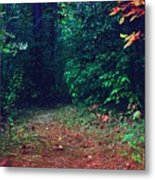 Afternoon Journey Metal Print