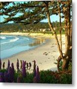 Afternoon On Carmel Beach Metal Print