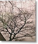 Afternoon Rain Metal Print