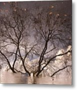 Afternoon Reflection Metal Print