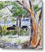 Afternoon Siesta On The Farm Metal Print