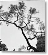Afternoon Thien Mu Pagoda Metal Print