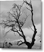 Against Sky Metal Print by Lee Stickels