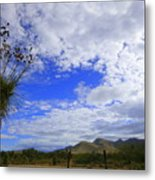 Agave And The Mountains Metal Print