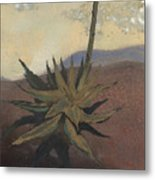 Agave Metal Print by Fred Chuang