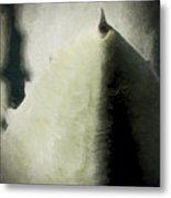 Agave Impression Four Metal Print