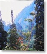 Agawa Canyon Metal Print