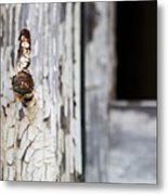 Aged To A Point Metal Print
