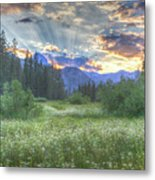 Agnew's Sunset Metal Print