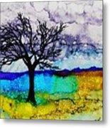 Changing Seasons - A 202 Metal Print