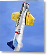 Air Show Metal Print by Marc Stewart